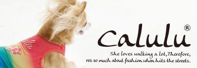 宠物服装产品